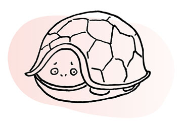 Line illustration of turtle with head and legs retracted into its shell